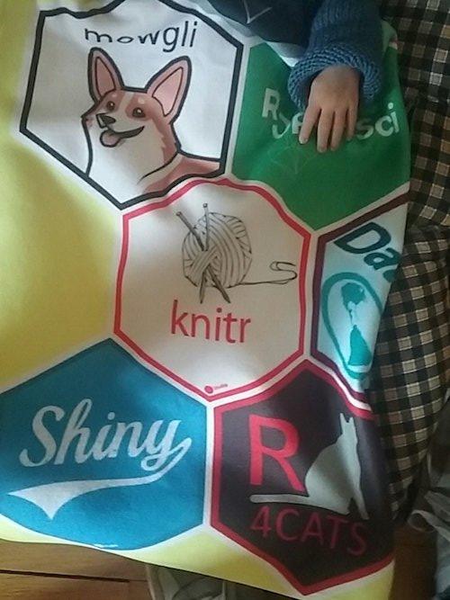 knitr logo on blanket
