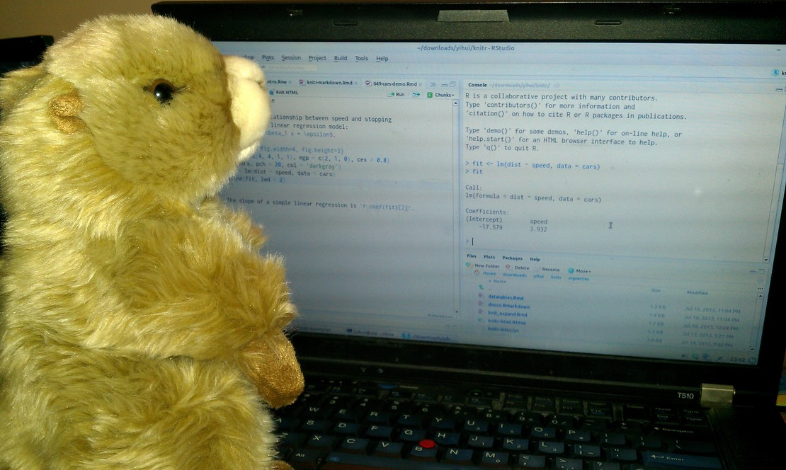 Marmot reproducible research