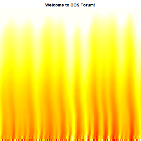 Simulation of Burning Fire in R