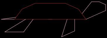 A turtle drawn in R